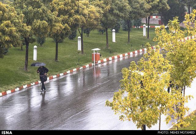 شروع بارندگی در بیشتر شهرهای خوزستان