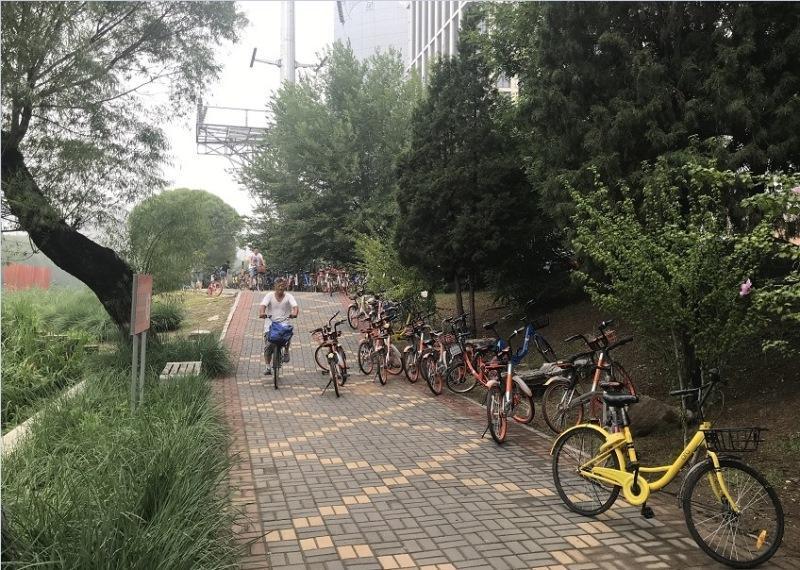 چین پیشگام در فرهنگ دوچرخه سواری