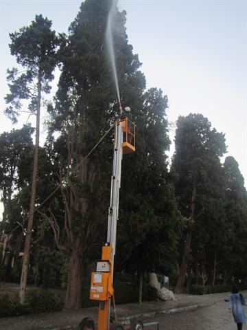 اجرای طرح حفاظت و نجات بخشی درختان و سامان دهی فضای سبز باغ فین