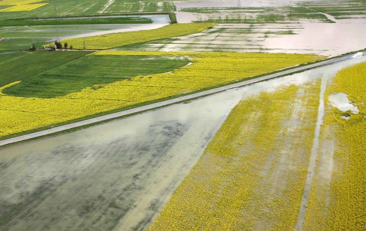 خبرنگاران پرداخت وام به کشاورزان سیل زده گلستان متوقف شد